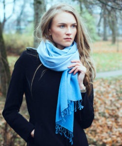 Shaded Pashmina - 70x200cm - 70%Cashmere / 30%Silk - Desert Sage and Mosstone